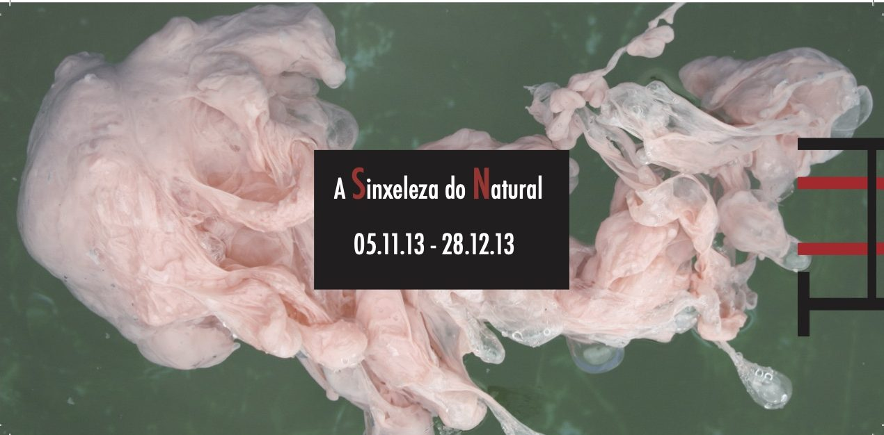 invitacion 2013
